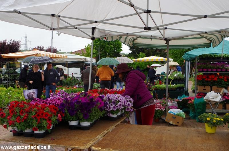 Fiera di Baraccone: un bel successo, nonostante la pioggia 4