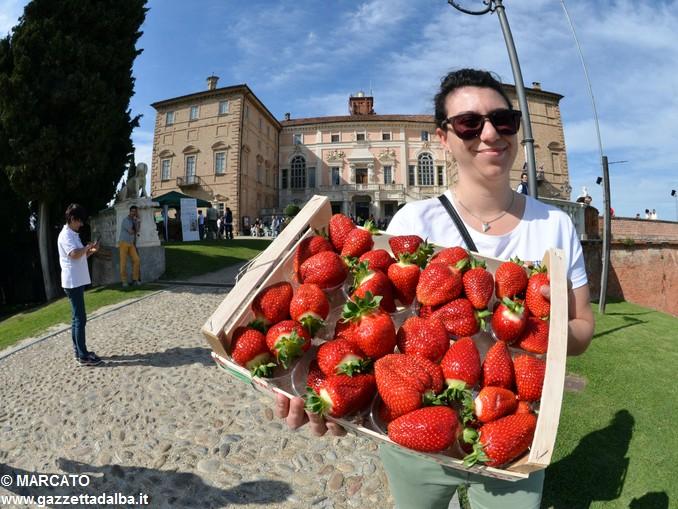 Il parco del castello di Govone si apre agli amanti delle rose 18