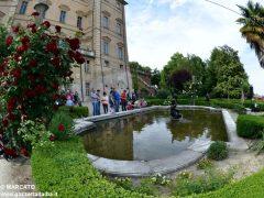 Il parco del castello di Govone si apre agli amanti delle rose 22