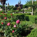 Nel parco del castello rose regali e fragole