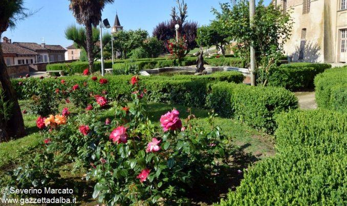 Nel parco del castello rose regali e fragole 1