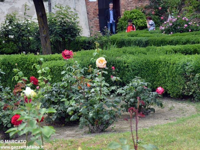 Il parco del castello di Govone si apre agli amanti delle rose 26