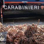 Ruba rame in un cimitero, italiano arrestato per furto aggravato