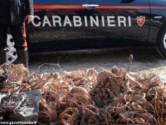I Carabinieri di Cuneo sequestrano 100 chili di rame