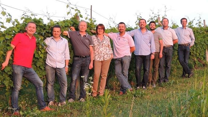 Moscato di Canelli: +30% nel 2015, si punta a quota 500 mila
