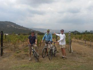 Viaggio tra i vini più alti del mondo