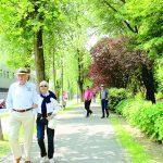 7.100 alberi per una città verde