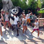 All'estate ragazzi di Canale il maestro è Kung fu panda