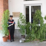 Due operai albesi denunciati per possesso di droga ai fini di spaccio