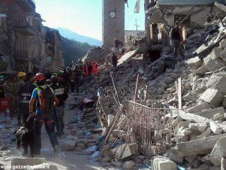 Dal comune di Alba le istruzioni per donare alle popolazioni colpite dal sisma 7