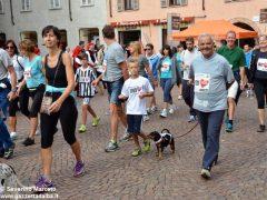 Corri sotto le torri: la fotogallery 10