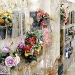 Grave degrado nella parte vecchia del cimitero di Alba