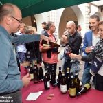 Festa del vino, Alba diventa enoteca con Go wine