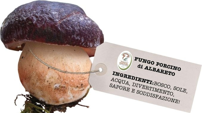 Fiera del fungo ad Albareto (Parma), gemellata col tartufo di Alba