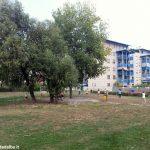 Viale Masera potrà essere il decimo quartiere: Bolla lancerà l'idea ai residenti