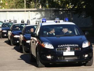 Piantagione di Marjuana nelle Langhe: arresti domiciliari per due albesi