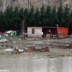 La storia: campo cinofilo, sogno da ricostruire