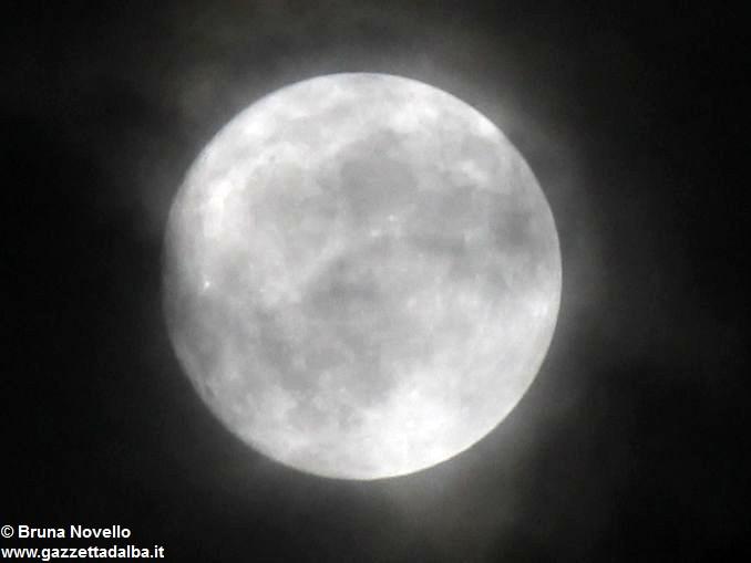 luna-bruna-novello-canale_