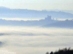Dolce nebbia. Ecco le foto più belle degli orizzonti di Langa 3