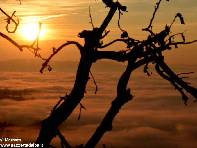 nebbia-108-panorama