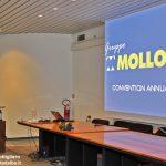 Il Gruppo Mollo si espande: fatturato in crescita, corrono i settori formazione e e-commerce.