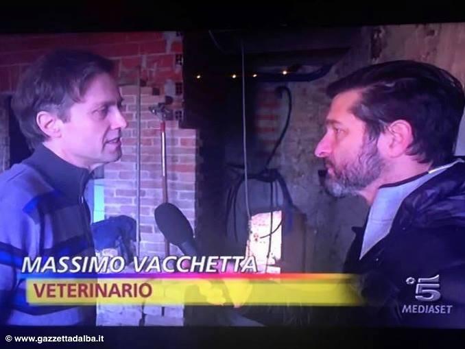 striscia Massimo Vacchetta