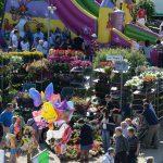 """É tutto pronto per la  """"Rassegna dei fiori e dei piccoli animali"""" di Baraccone del 1° maggio"""