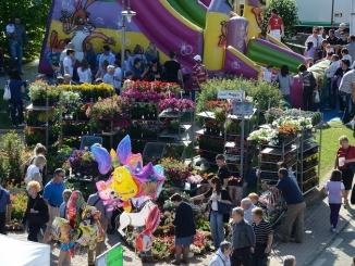"""É tutto pronto per la  """"Rassegna dei fiori e dei piccoli animali"""" di Baraccone del 1° maggio 1"""