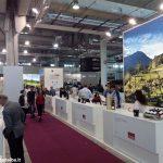 Vinitaly, la contraffazione del vino vale 83 milioni di euro in Italia