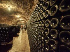 65.000 degustazioni nel primo week-end di Vinum 2