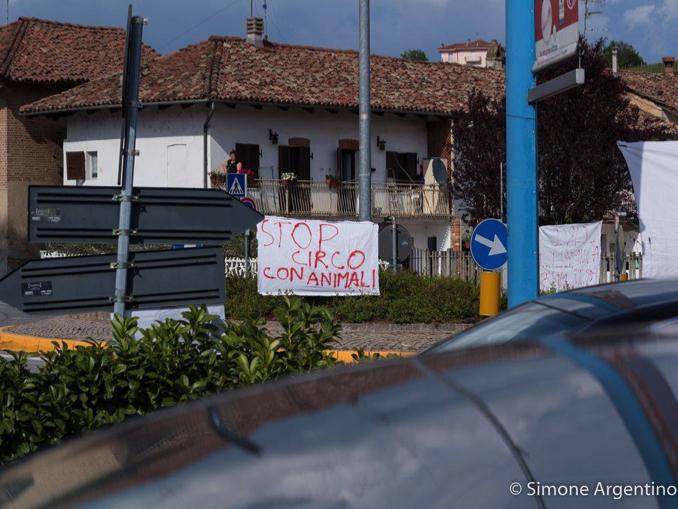 protesta-circo-1