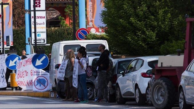 """Piobesi: animalisti manifestano di fronte al tendone del circo """"Millenium"""""""