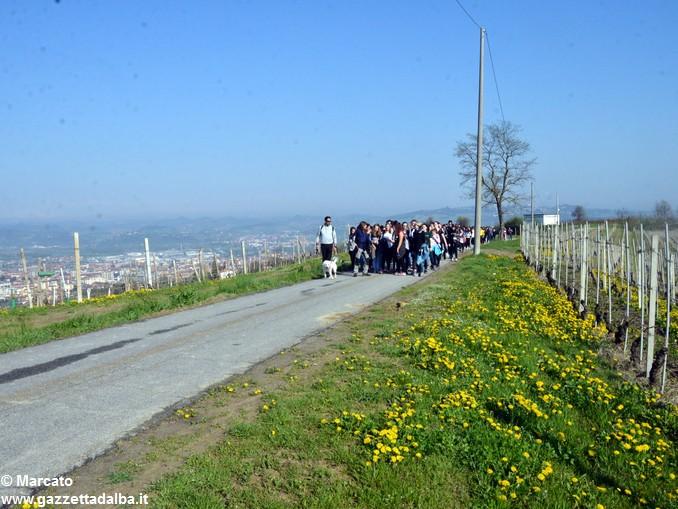 Studenti da 4 Nazioni alla scoperta delle colline albesi 14
