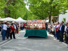 A Sommariva Perno inizia la Sagra: fragole, teatro, arte e musica 5