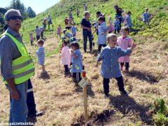 Dietro al Salone di Vezza nascerà un bosco, grazie ai bimbi e alla Regione 5