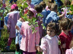 Dietro al Salone di Vezza nascerà un bosco, grazie ai bimbi e alla Regione 16