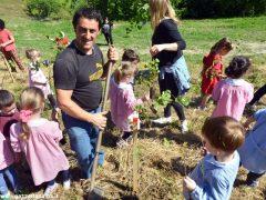 Dietro al Salone di Vezza nascerà un bosco, grazie ai bimbi e alla Regione 17