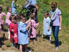 Dietro al Salone di Vezza nascerà un bosco, grazie ai bimbi e alla Regione 1