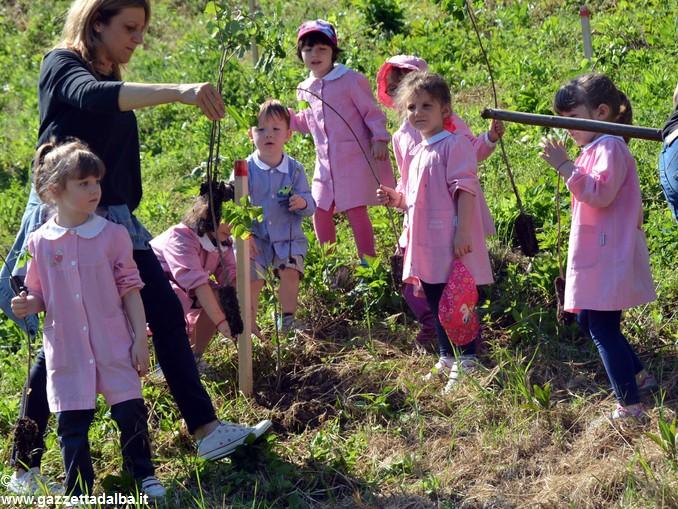 Vezza bimbi piantano bosco nuovo (7)