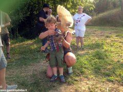 Un giorno per imparare a fotografare i rapaci con i Falconieri dei 4 venti 4