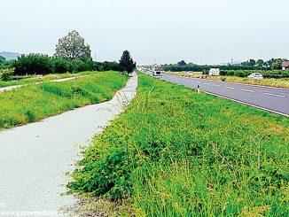 Dopo l'incidente mortale Carlo Bo chiede guard-rail per la tangenziale