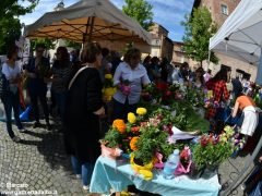 Macramè celebra la solidarietà tra i popoli. Tutte le foto della festa