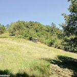 Le associazioni fondiarie per rilanciare l'agricoltura nelle aree montane