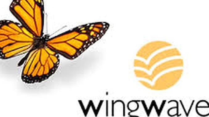 Eliminare l'ansia con la tecnica wingwave. Mercoledì 3, la conferenza ad Alba