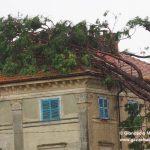 Ceresole: raffiche di vento e grandine causano ingenti danni a colture e abitazioni