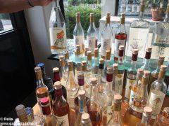 La distilleria Santa Teresa di Alba festeggia i 40 anni all