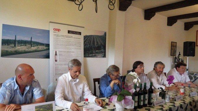 Per i vini senza solfiti serve uva sana e attenzione in cantina 1