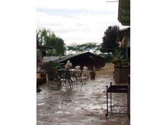 Ceresole: raffiche di vento e grandine causano ingenti danni a colture e abitazioni 14