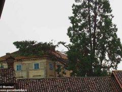 Ceresole: raffiche di vento e grandine causano ingenti danni a colture e abitazioni 7