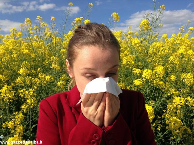 allergia – asma